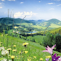 urlaub steiermark, urlaub almenland, urlaub fladnitz teichalm steiermark, urlaub rechberg steiermark, urlaub graz umgebung steiermark-Pröllhofer Landschaftsblick