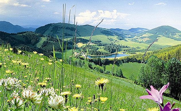 almenland, almenland steiermark almenland fladnitz teichalm, almenland rechberg steiermark, almenland graz umgebung steiermark-Pröllhofer Blick Teichalmsee Kopfbild