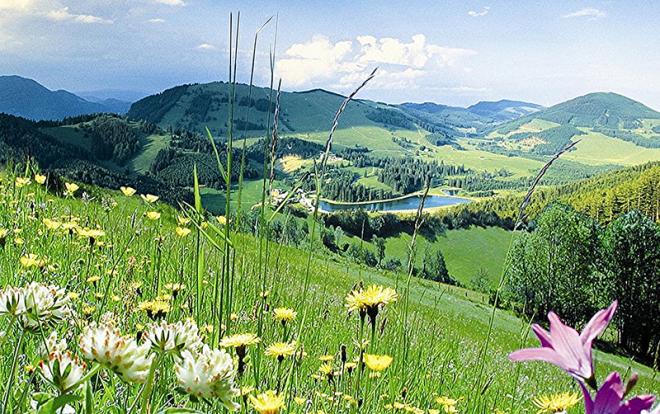 kurzurlaub steiermark kurz mal weg Steiermark, kurzurlaub almenland, kurz mal weg almenland, kurzurlaub schöcklland, kurz mal weg schöcklland - Gasthof Knoll Pröllhofer Almenland